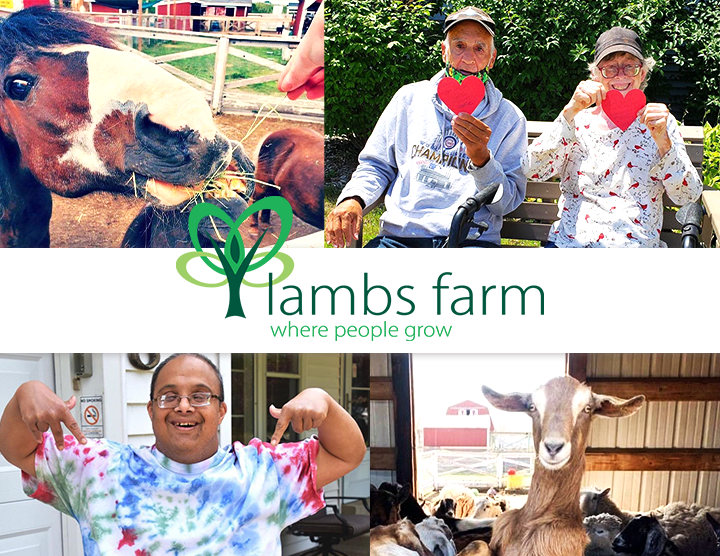 Recycle for a Reason: Lambs Farm